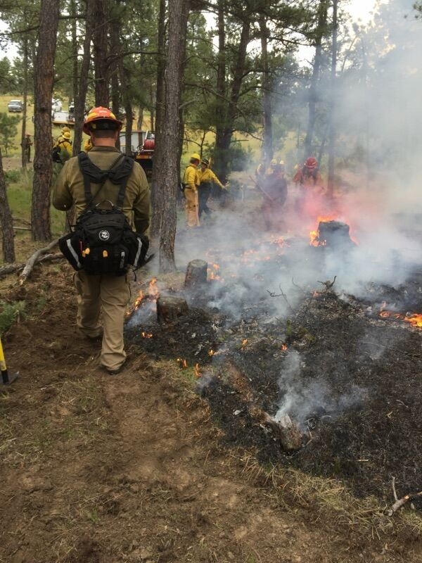 Volunteers complete their training by participating in controlled burns.