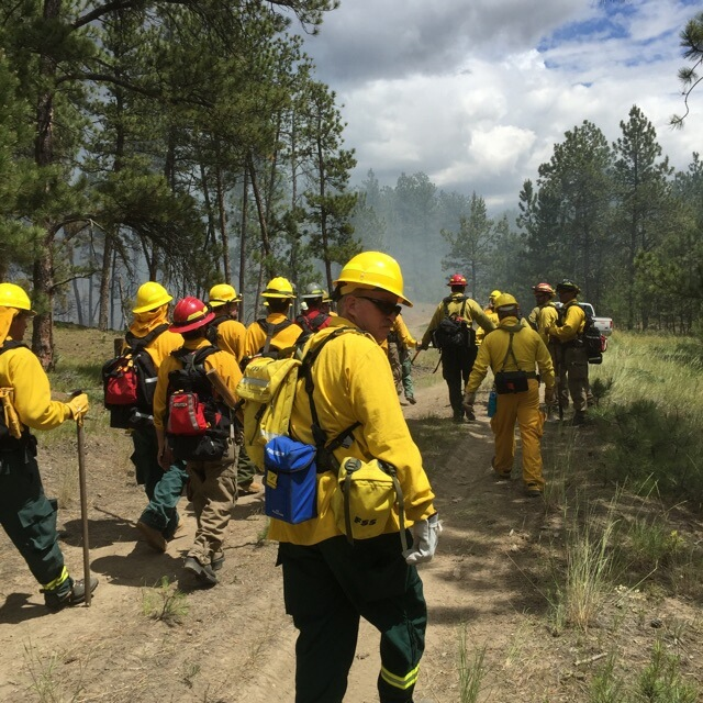 Volunteers walk toward the controlled burn training area.